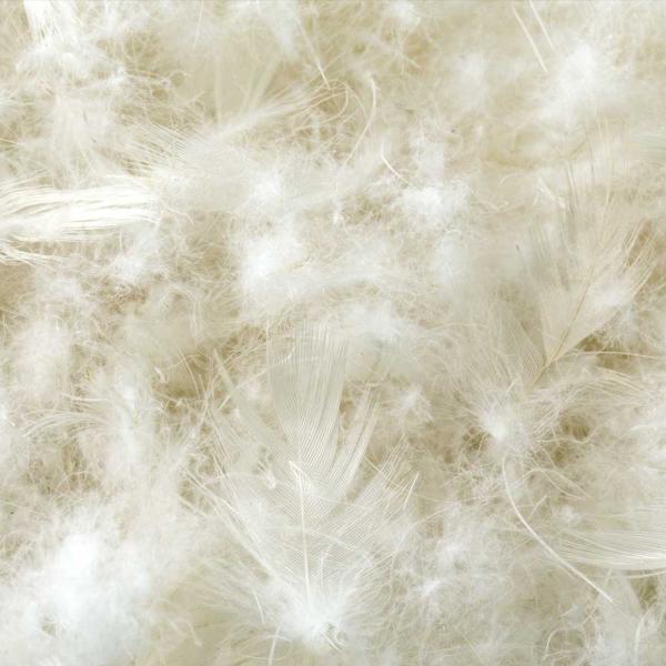 Cotton Encased Down Blend